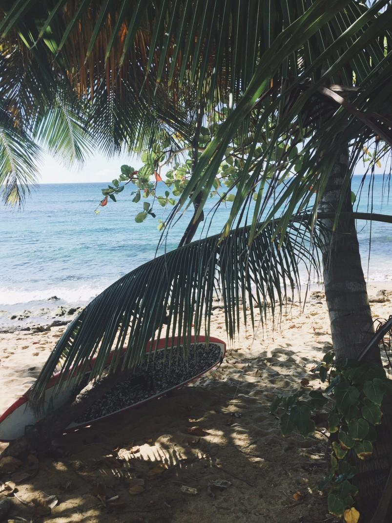 Rincon, A surfer's paradise